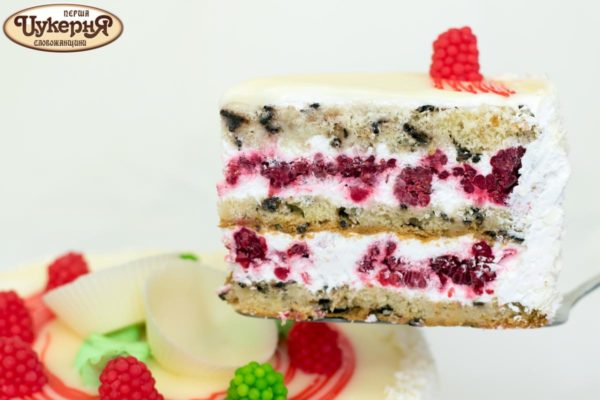Кусочек торта со свежей малиной