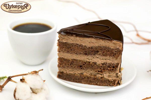 Кусок шоколадного торта Старая прага